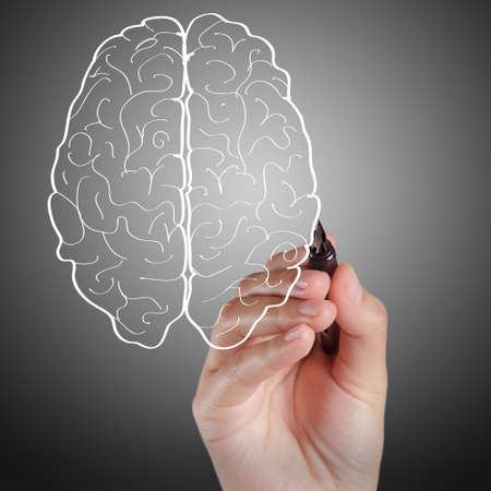 knowledge is power:  hand draws brain sign as concept
