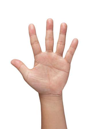 hand symbol on white background Stock Photo - 14731706