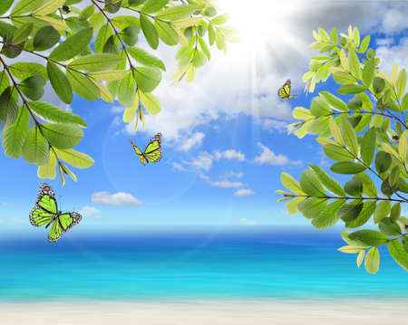 Fresh green leaves and butterfly on natural background photo
