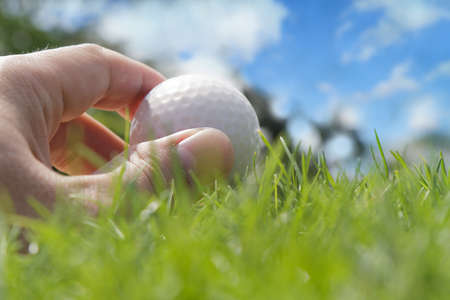 Golfer putting a ball on the green of a golf course Stock Photo - 16081263
