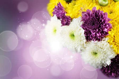 flower close up: Dahlia Autumn flower design.With copy-space