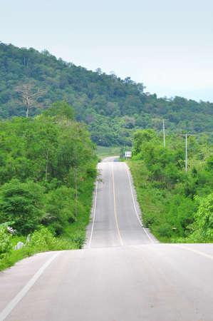 Forest road. Landscape for background Stockfoto