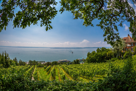 Views over the vineyards of Meersburg down by the lake you can see the pier of Lake Constance ferry.