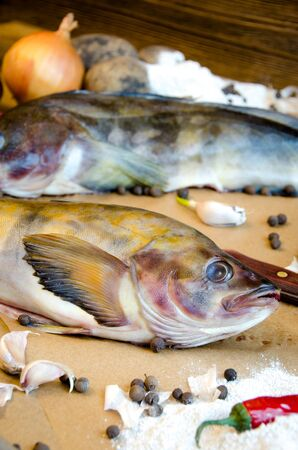 greenling: grinling fish with vegetables onions garlic lemon on baking paper Stock Photo