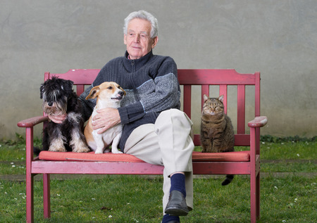 Senior man with dogs and cat on bench photo
