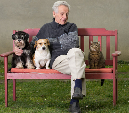 purring: Senior man with dogs and cat on bench