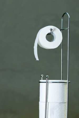 Roll of toilet paper stands on modern metal holder photo