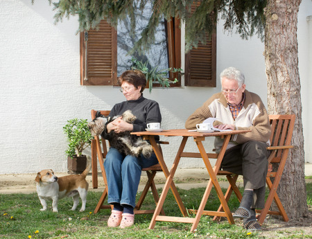 Senior couple enjoying in courtyard, sitting, drinking coffee, reading a book and playing with dogs photo
