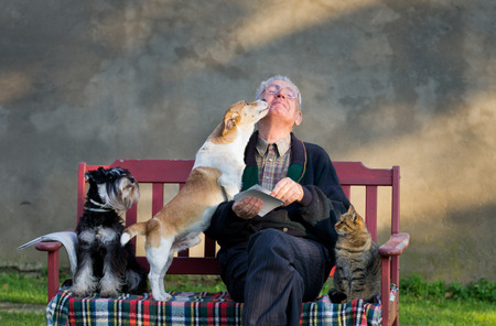 cuddles: Senior man with dogs and cat on his lap on bench