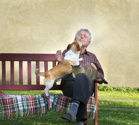 grizzle: Senior man with dog and cat on his lap on bench