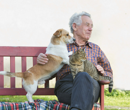grizzle: Senior man with dog and cat on his lap in garden