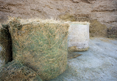 Haylage and silage stored on farm Stock Photo