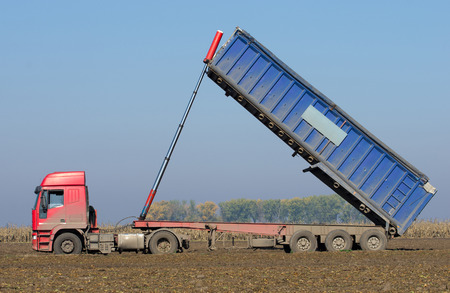 tipping: Agricultural truck tipping on field