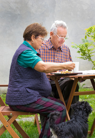 Senior couple sitting in garden in morning photo