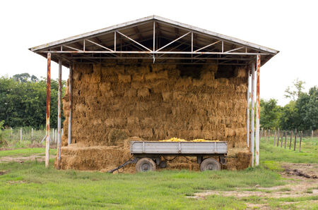 grainery: Storage of straw bales and trailer with corn