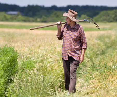 Proud old man farmer holding fork and looking at his field photo