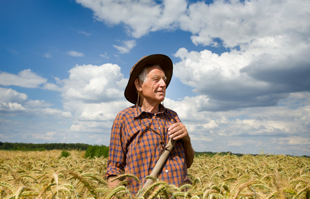 conceived: Conceived old man farmer resting in barley field after hard work