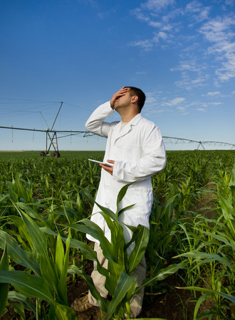 Agronomist in white coat with tablet in hand feeling disappointed in corn field photo