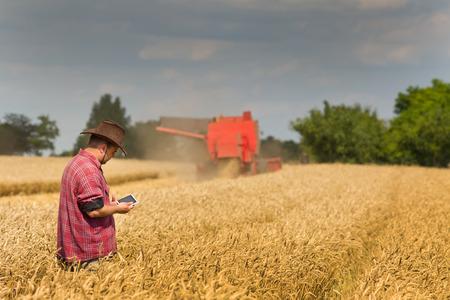 cosechadora: Campesina sostiene la tablilla en el campo de trigo se combinan en el fondo