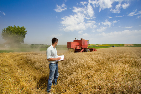 Young engineer writing notes in book on wheat field, combine harvester in background