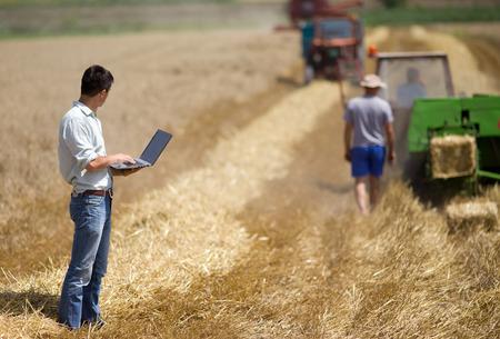 Giovane proprietario terriero con il computer portatile supervisione lavoro di raccolta