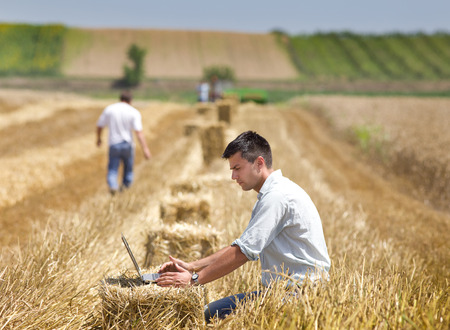 agriculture industry: Young landowner with laptop supervising harvesting work