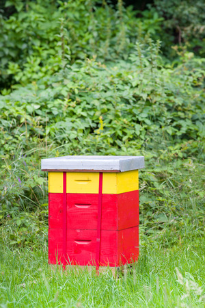 Red beehive standing alone on meadow in front of forest photo