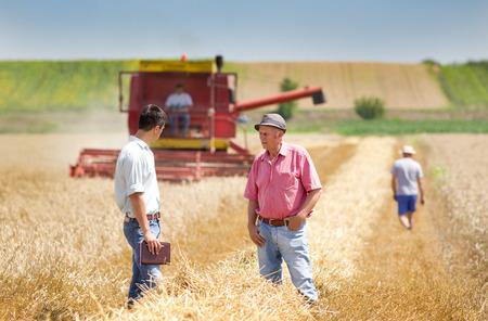 Peasant and business man walking on wheat field during harvesting 版權商用圖片