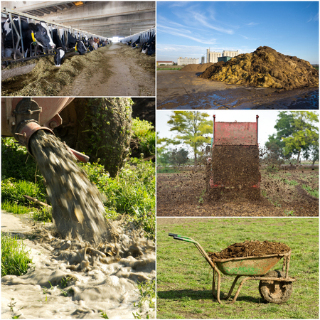 Collection of images of fertilizing field with natural manure