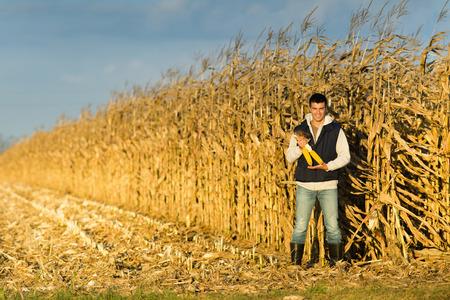 Jóvenes agricultores celebración mazorcas satisfechos en campo de maíz