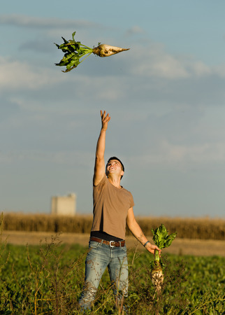 Happy young man throws up sugar beet in the field