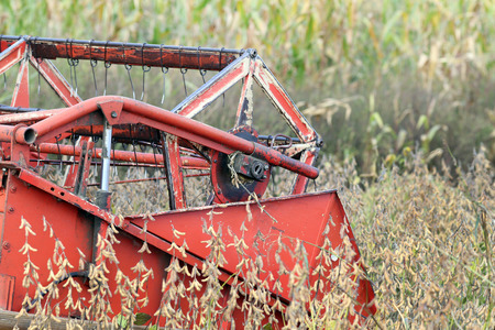 yielding: Close up of combine harvester working in soybean field