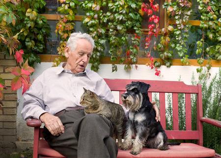 Vecchio uomo appoggiato sul banco e coccole cane e gatto