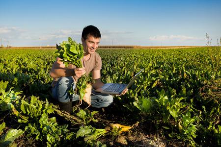 remolacha: Agricultor joven que sostiene la remolacha azucarera y el ordenador portátil en el campo