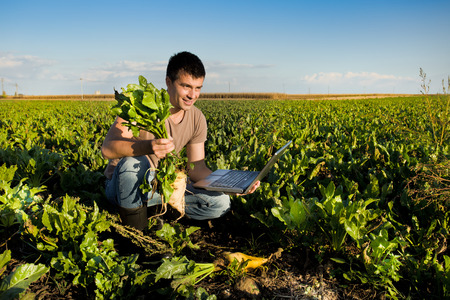 Young farmer holding sugar beet and laptop in field