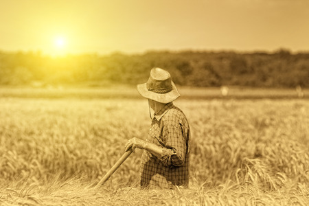 agriculture landscape: Old photo of senior peasant after hard work in the field Stock Photo