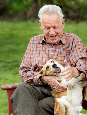 personas comunicandose: Viejo hombre que juega con su perro en el banco en el jard�n Foto de archivo