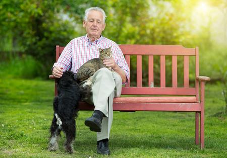 pet care: Old man resting on bench and cuddling dog and cat Stock Photo