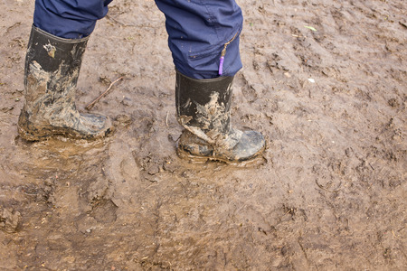 rubber boots: Human legs walking with muddy rubber boots on wet silt