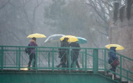 umbrella month: People crossing metal bridge on heavy rain