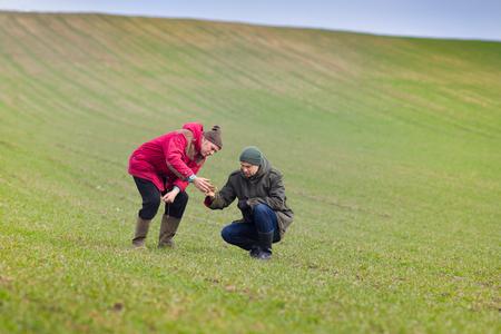 Two farmers monitoring seedlings in the field in winter time 版權商用圖片