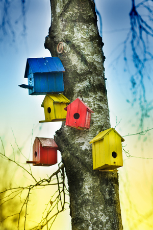 bird house: Colorful bird houses on tree trunk in forest Stock Photo