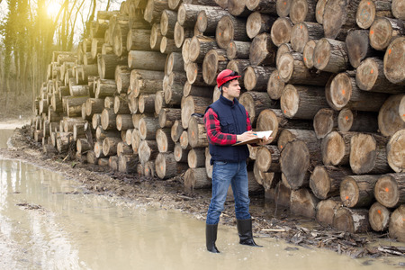 Young lumber engineer standing with notebook beside cut trunk stock Archivio Fotografico