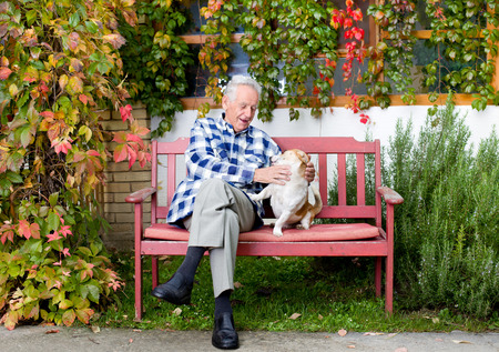 Senior man playing with his dog on the bench in courtyard photo