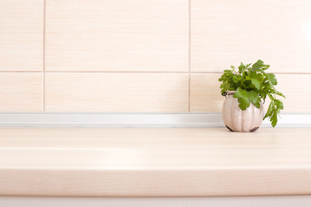 Fresh parsley in pot on wooden kitchen countertop photo