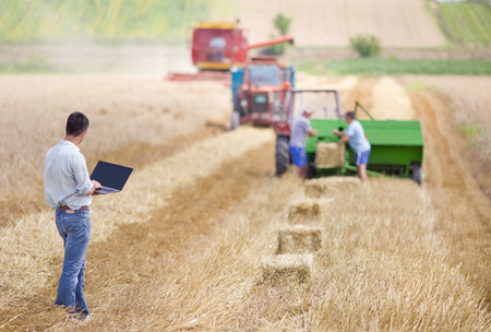 agriculture industrial: Young landowner with laptop supervising harvesting work
