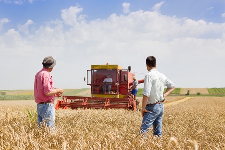 Peasant and businessman looking at combine harvester on wheat field Reklamní fotografie
