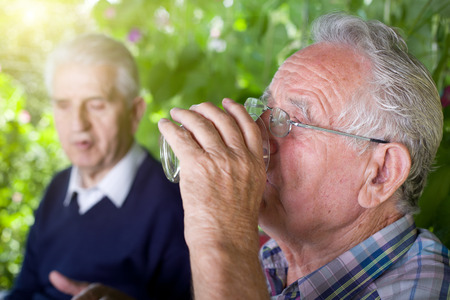 conceived: Two senior men siting in garden, chatting and drinking water