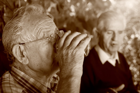 Two senior men siting in garden chatting and drinking water, sepia technique Stock Photo