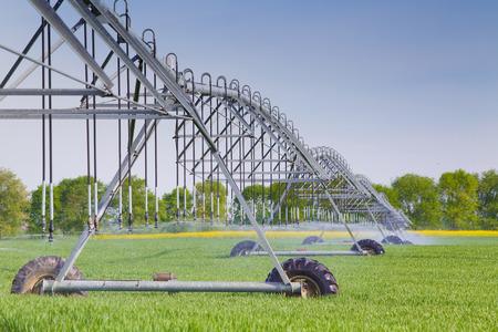 Moderno sistema di irrigazione agricola irrorazione in campo di grano